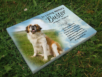 Personalised grave headstone memorial plaque dog Saint Bernard or any breed