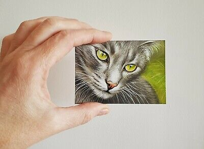 ACEO Cat Kitten Original Grey Tabby Drawing Painting Miniature SFA Art by Elena