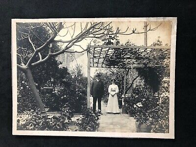 Vintage Photo: Cabinet Card: Mystery Lady Gent In Gardens: Arbour