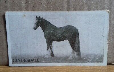 circa 1926 Richard Lloyd & Sons Cigarette Card - Types of Horses # 22 Clydesdale