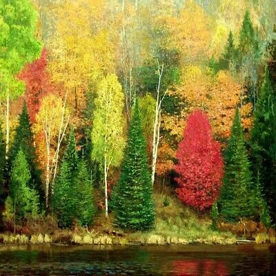 """""""Reflections of Fall"""" - Original Oil Painting by Canadian Artist Chris Morton"""