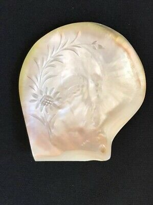 Antique Carved Mother Of Pearl Sea Shell Sunflower Vine Dish