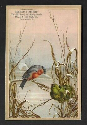 Victorian Trade Card Columbus OH Souder & Bright Fine Millinery & Fancy Goods*20