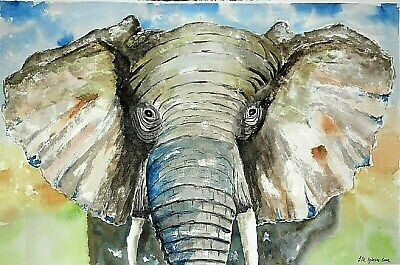 Original painting picture watercolor by  Jose Manuel Iglesias fineart 56 x 38cm