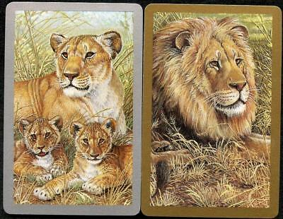 Lions And Thier Baby Cubs Swap Cards X2 Pair Just Beautiful (New)