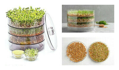 3 TRAY SEED SPROUTER KITCHEN GERMINATOR FOR BEAN & SEEDS Healthy Organic Sprouts