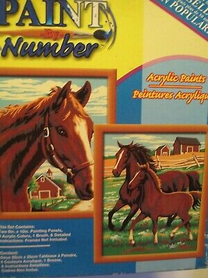 Paint By Number Kit Horse Horses Pony 2 prints Craft House Unopened