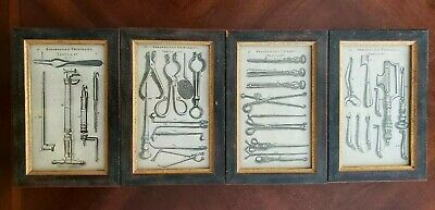 Set of Four Rare Scultetus 17th Century Famous Medical Engravings, Framed