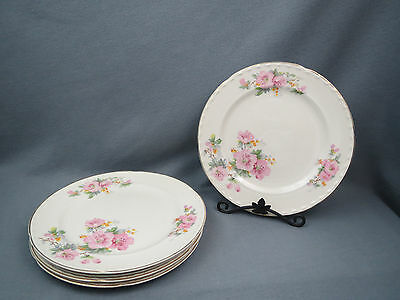 5 Crooksville THEMATIC CR01 Pink Flowers DINNER PLATE Floral Gold Morning Glory