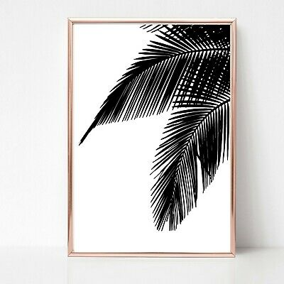 palm leaf leaves print PICTURE WALL ART A4 Botanical plant UNFRAMED tropical