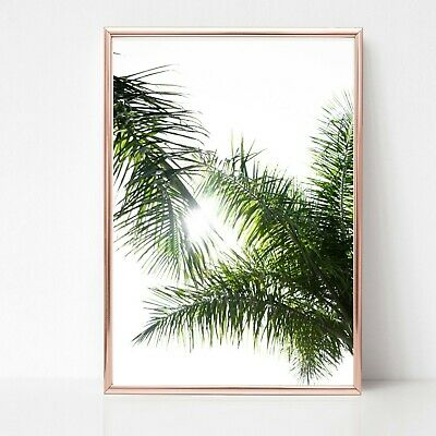 palm leaf leaves print PICTURE WALL ART A4 Botanical plant UNFRAMED tropical 30