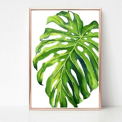 palm leaf leaves print PICTURE WALL ART A4 Botanical plant UNFRAMED tropical 31