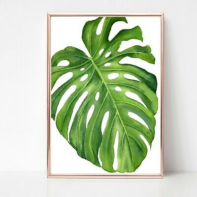 palm leaf leaves print PICTURE WALL ART A4 Botanical plant UNFRAMED tropical 32