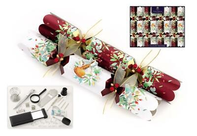 "Tom Smith Christmas Crackers 8 x 14"" Luxury Traditional Robin"