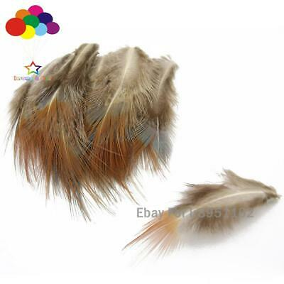 10-100 pcs precious natural scarcity pheasant feather 40-50 cm //16-20 inches