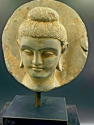 Lovely Authentic 5th Century A.D. Gandhara 犍陀罗 Buddha Head