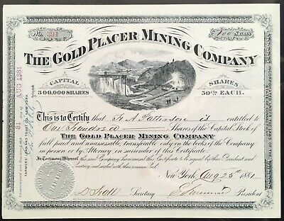 GOLD PLACER MINING COMPANY Stock 1881. Colorado Hydraulic Placer Gold Mining. EF