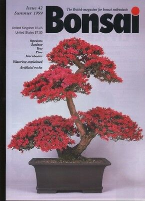 BONSAI MAGAZINE - Summer 1999