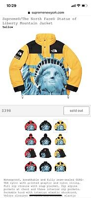 Supreme X The North Face Statue Of Liberty Mountain Parka