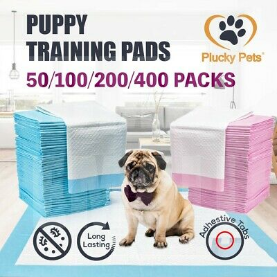 Puppy Pet Dog Indoor Cat Toilet Training Pads Absorbent Thin 60X60cm(BLUE/PINK)