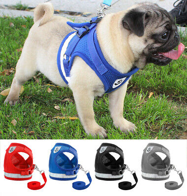 Pet Small Dog Puppy Harness Breathable Mesh And Leash Set Vest Chest Strap S-XL