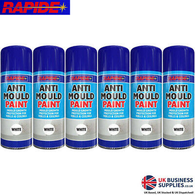 Rapide Anti Mould & Protection For Walls & Ceilings White Spray Paint 400ml