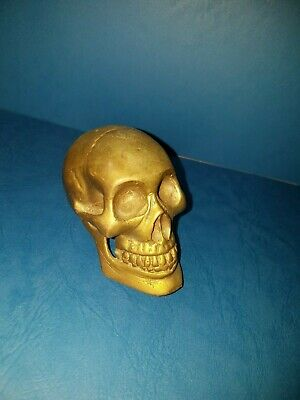 Brass Human Skull In Very Good Condition