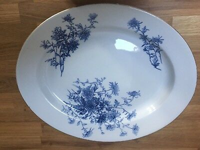 Stunning Large Antique Royal Worcester Blue & White Serving Platter - Maple & Co
