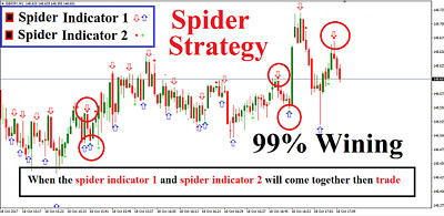 Forex system  & Binary Spider strategy profitable  mt4 indicator SEE VIDEO