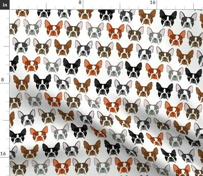 Multi Color Boston Terrier Dog Head Dogs Pet Fabric Printed by Spoonflower BTY