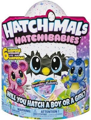 Hatchimals Hatchibabies Ponette Egg Boy or Girl Surprise Spin Master Worn Box