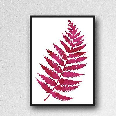 fernn leafs leaves print PICTURE pink WALL ART A4 Botanical plant UNFRAMED 299