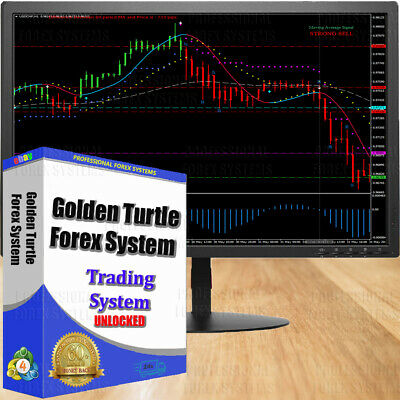 Trading forex system Golden Turtle Forex System for MT4