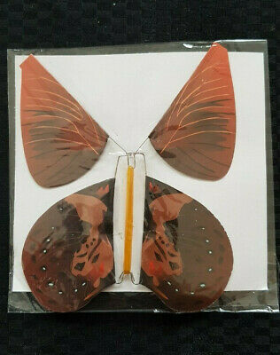 Magic Flying Butterfly for Birthday Anniversary Wedding Greeting Card Gift Toy