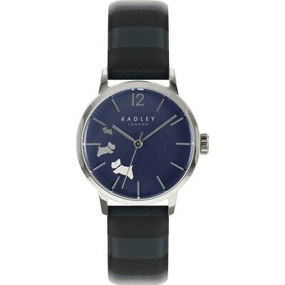RY2675 Radley ink dial striped leather strap watch