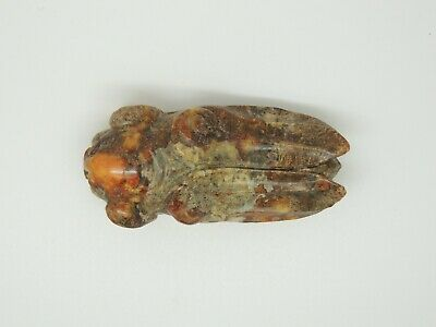 Chinese Brown Jade Carved Pig Head with Cicada Body