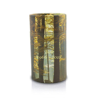 Autumn Woods Paper Pet Cremation Urn for Ashes - Extra Small  Yellow