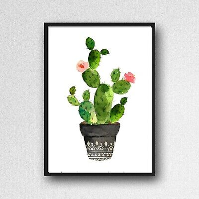 cactus print PICTURE botanical plant A4 unframed wall art poster gloss 220