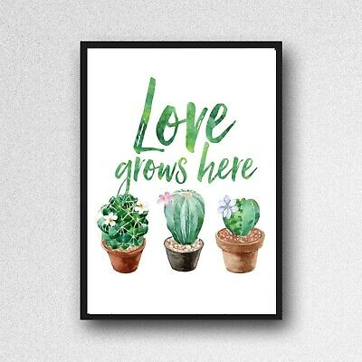 cactus love grows here print PICTURE botanical plant A4 unframed wall art gloss