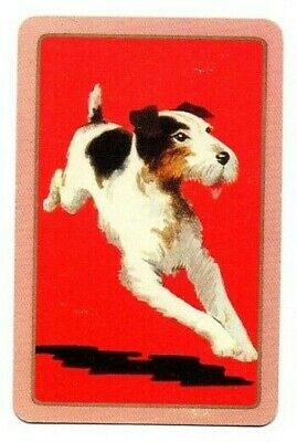 Coles  TERRIER PUPPY DOG Un-Named # 1542 Swap Playing Card