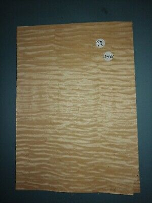 Consecutive Sheets Of Quilted Maple  Veneer 24 X 33 Cm Qm#2 Marquetry