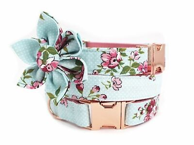 Baby Blue Dog Collar & Removable Flower Rose Gold metal buckle