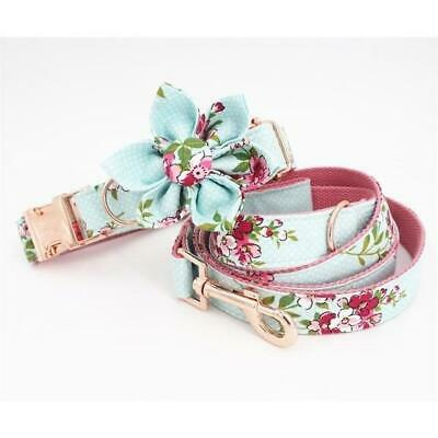 Baby Blue Dog Collar, lead, flower,bow, rose gold metal buckle