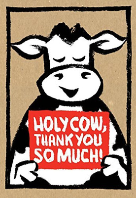 Rosenthal, Amy Krouse-Holy Cow NEU