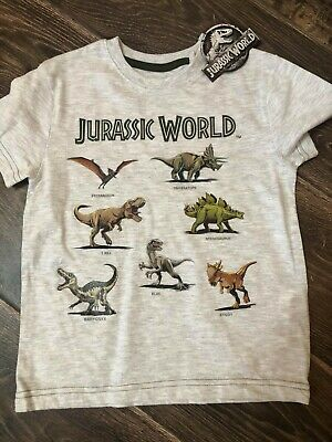 Jurassic World Boys Logo T-Shirt Ages 5 to 13 Years