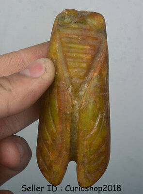 """3.2"""" Very Good China Hongshan Culture Old Jade Hand-Carved cicada Amulet Pendant"""