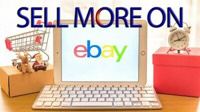 700+ All about Ebay Tips PLR Articles Free shipping 24hrs