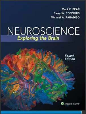 PDF Neuroscience Exploring the Brain 4th Edition by Bear, Mark F