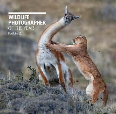 Wildlife Photographer of the Year: Portfolio 29 | Rosamund Kidman Cox
