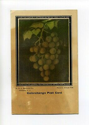 Antique Colorchange Postcard, Grapes, H.C.J. Deeks & Co